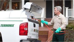 Pest Control In Davenport Iowa Terminix Davenport Ia Company Information