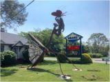Pest Control toms River Nj Pest Control Company In Nj Unveils Praying Mantis