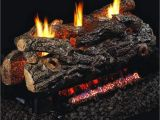 Peterson Vent Free Gas Logs Reviews Peterson Real Fyre 24 Inch Golden Oak Designer See Thru