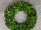 Preserved Boxwood Wreath Bulk Craft House Designs wholesale Boxwood Wreath 11