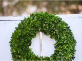 Preserved Boxwood Wreath Bulk Large Preserved Boxwood Wreath Base Wreath Spring Wreath