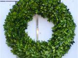 Preserved Boxwood Wreath Bulk Large Preserved Boxwood Wreath Spring Wreath Winter