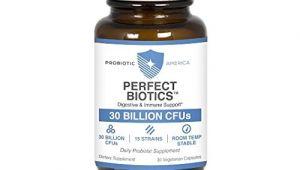 Probiotic America Perfect Biotics Amazon Best Probiotic America Perfect Biotics for Sale 2016