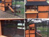 Producer S Pride Defender Chicken Coop Producer 39 S Pride Defender Chicken Coop solid Wood