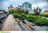Public Park In Manhattan High Line Park Urban Public Park On An Historic Freight