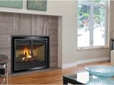 Regency Direct Vent Gas Fireplace Reviews Regency P36d Gas Fireplace Aqua Quip