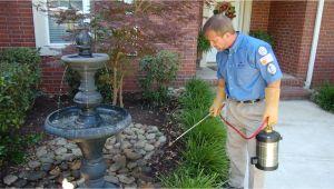 Rodent Control Charleston Sc Pest Control Charleston Pest Control Services Charleston Father