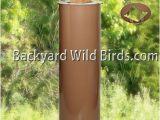 Squirrel Baffle for 4×4 Post Post Raccoon Tan Baffle at Backyard Wild Birds