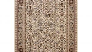 Texas Star area Rugs Kathy Ireland Antiquities American Jewel Ivory area Rug by Nourison