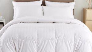 Top Rated Lightweight Down Comforters Puredown Lightweight Down Comforter Reviews Wayfair