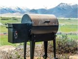 Traeger Grills Tfb38tca Renegade Elite Review Traeger Renegade Elite Grill Reviews Grilling Your Way to