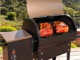 Traeger Renegade Elite Price Traeger Junior Elite Grill Review to Buy or Not to Buy