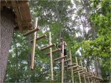 Tree toppers Dade City Giveaway Four Tickets to Treehoppers Adventure Park In
