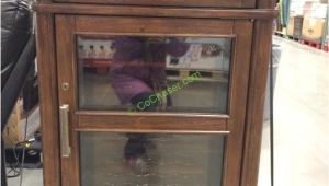 Tresanti Wine Cooler Costco Tresanti Wine Cabinet with 24 Bottle Cooler Costcochaser