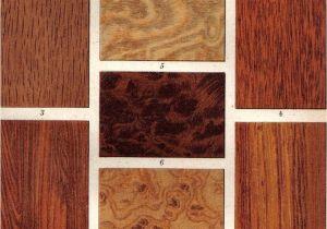 Types Of Walnut Wood 1903 Wood Types Oak Walnut Tree Ironwood by Cabinetoftreasures