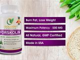 Ultra Trim 350 Pure forskolin Amazon Com 100 Pure forskolin Extract for Weight Loss Maximum