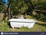Water Trough Bathtub Ideas Bathtubs Outstanding Water Trough Bathtub Pictures Cool