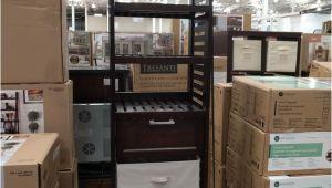 Whalen Closet organizer Costco Thomasville Luxury Shag Rug