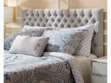 What Color Furniture Goes with Grey Headboard Shop Jezebel Adjustable Full Queen button Tufted Headboard by