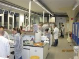 Where to Buy Follinique Img 7163 Test Technikinitiative Nwt