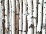 White Birch Logs Lowes White Birch Wood Logs Decorative White Birch Logs Birch