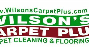 Wilson Carpet Cleaning Summerville Sc Wilson 39 S Carpet Plus Summerville Sc 29483 800 968 7953