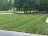 Winning Colors Grass Seed Sharpe 39 S Lawn Equipment Holganix Really Works Our