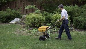 Winterizer Fertilizer when to Apply Fertilizing Your Garden or Lawn In Late Fall