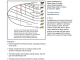 Wolf Oven Repair Los Angeles Pdf whole Genome Sequence Analysis Shows that Two Endemic Species